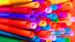 Plastic Free July Stainless Steel Straws Australia