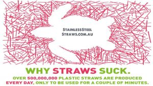 Stainless Steel Straws PLastic Free July