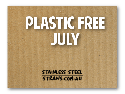 Plastic Free July Metal Straws