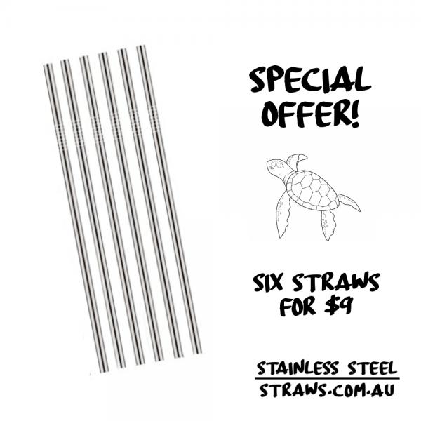 CHEAPEST Stainless Steel Straws Australia