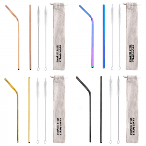 Twin Set Stainless Steel Straws