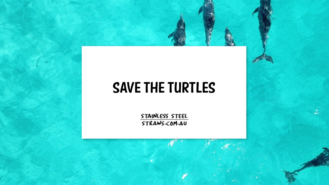 Save the turtles