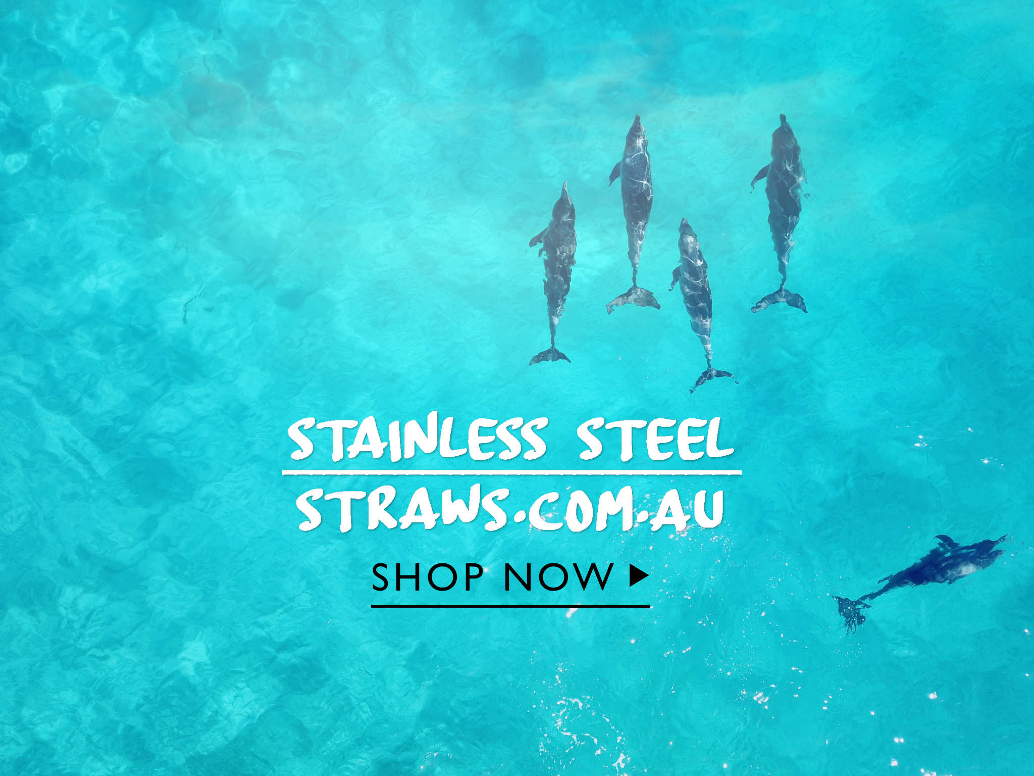 Stainless Steel straws Eco Friendly Gift Ideas